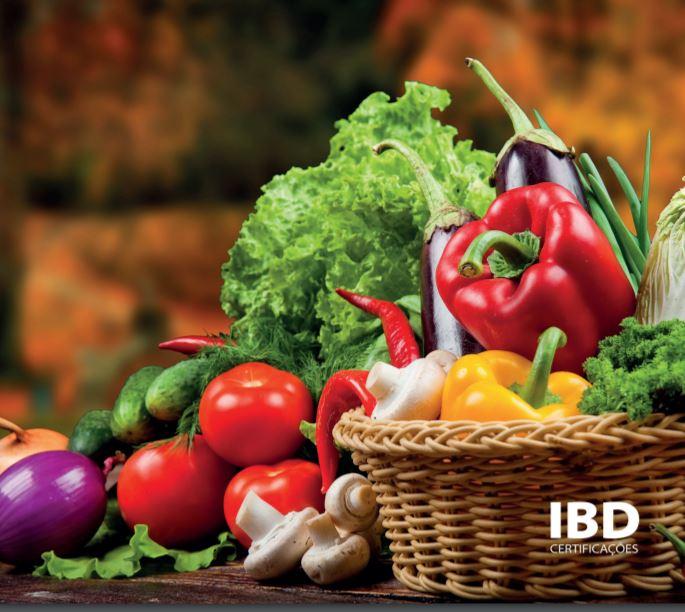 Buscar alimentos que tragam saúde é a tendência atual